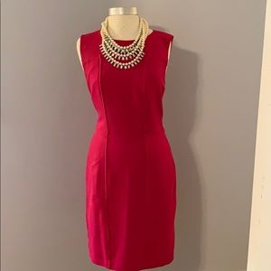 Banana Republic deep pink sz 14 dress